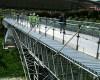 eden-project-footbridge-5.jpg
